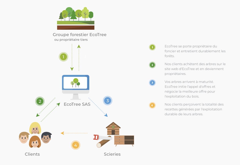 Read more about the article Journée mondiale de l'environnement- Ecotree