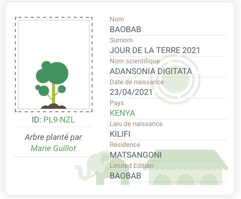 Carte d'identité du Baobab